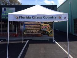 Citrus Country Tent