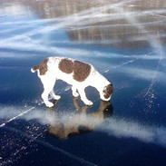 Kirsi on Ice.jpg