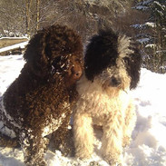 Kirsi and Lula..jpg