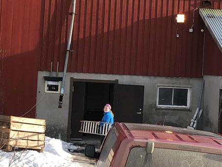 NKK Bø i Telemark