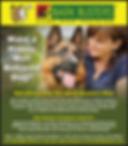 77798-Bark Busters-Ad (002).jpg