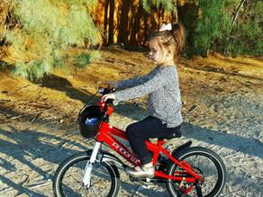 Phoenix Kids Bike