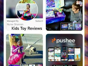 Pushee App