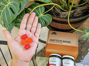 🍊🍓 These cbd infused vegan gummies from coloradobotanicals taste amazing are the freshest!!