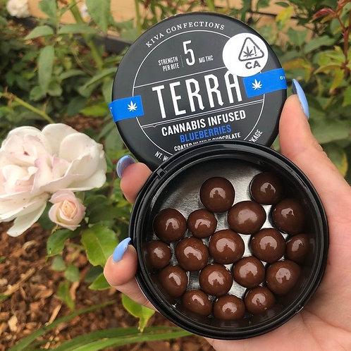 Blueberry Terra Bites by Kiva