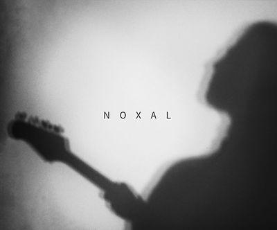 alon Noxal Pic.jpeg