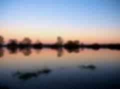 evening-194018_1280.jpg
