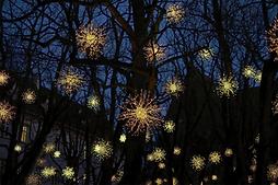 Christmas Lights_edited.png