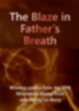 blaze front cover 100dpi.png