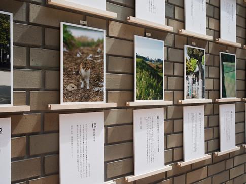 江戸川区総合文化センター 江戸川アートプロジェクト 展示風景
