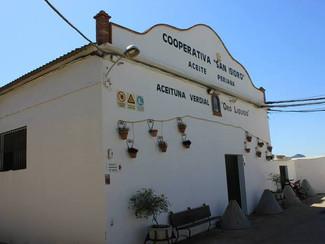Aceite Verdial Periana confía en COMONÓ Comunicación como su consultora de comunicación