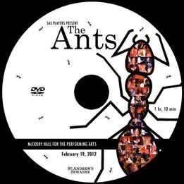 SAS_Ants.jpg