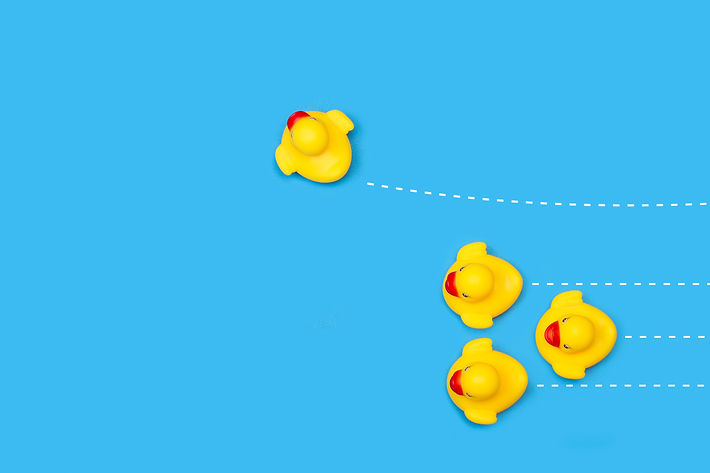 yellow-rubber-toy-ducks-blue-with-dashed-white-lines_edited.jpg