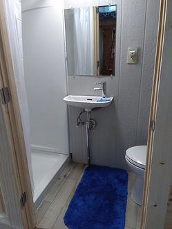 Tiny house bathroom.jpg