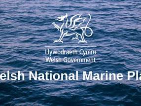 Shaping the Wales Marine Plan