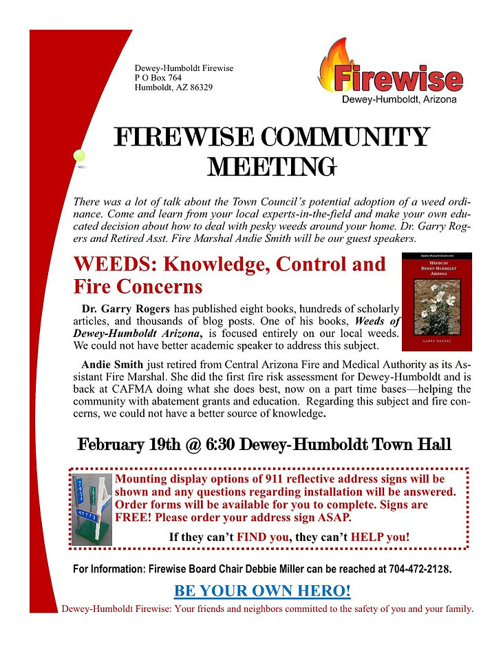 Community Meeting Concept February 2020.