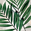 Thumbnail: Conjunto Folhas Fundo Mesclado