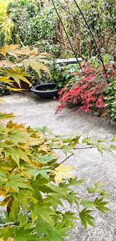 Japanischer Dachgarten