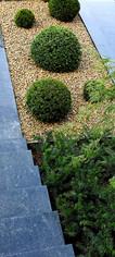 Minimalistischer Vorgarten