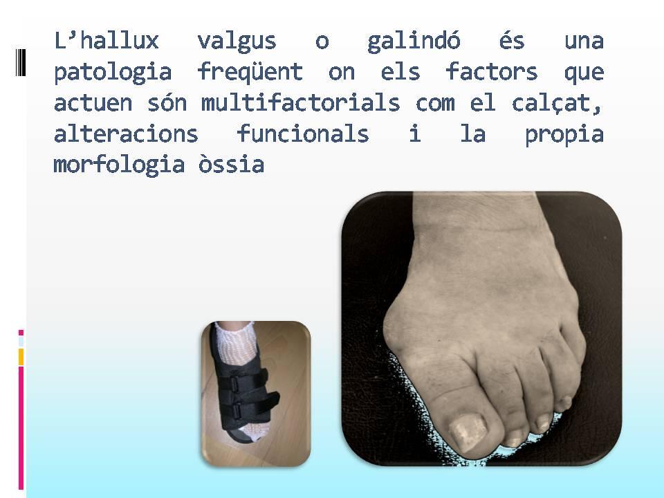 Diapositiva86.JPG