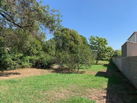 Nouveau à Saint-Martin-de-Crau : 4 magnifiques terrain à bâtir