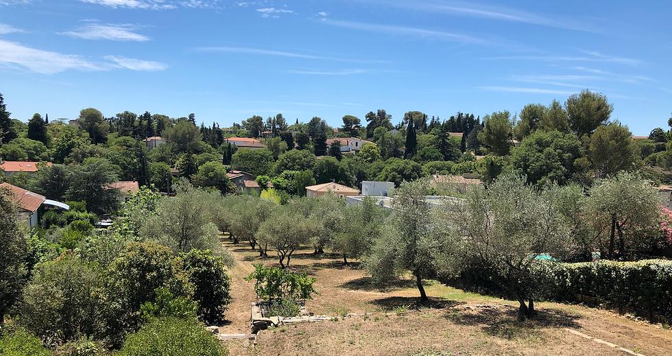 Lotisseur Nîmes Aménageur terrain.png