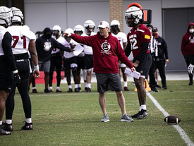 Gamecock football defensive players address spring practice, changes within program