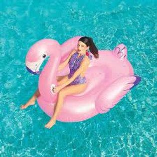 Schwimmtier Luxury Flamingo (174 cm)/ FENICOTTERO 41119 173X170