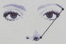 Sourcil2.jpg