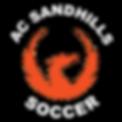 2018 ACS logo_3c_SOCCER.png