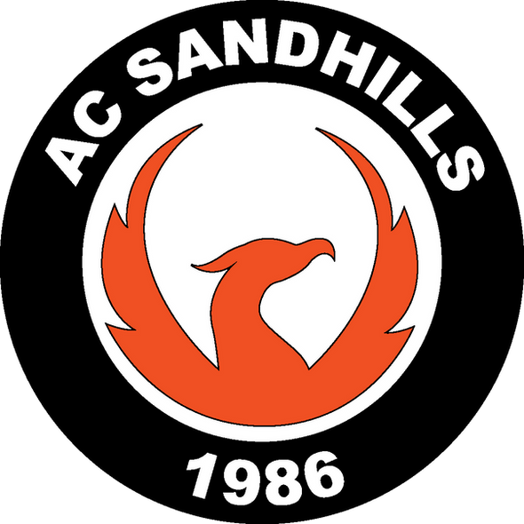 2018 ACS logo_3c_1655KW (1).png