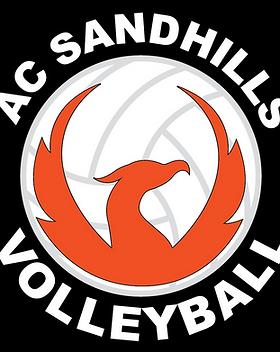 2018 ACS logo_3c_VB.png
