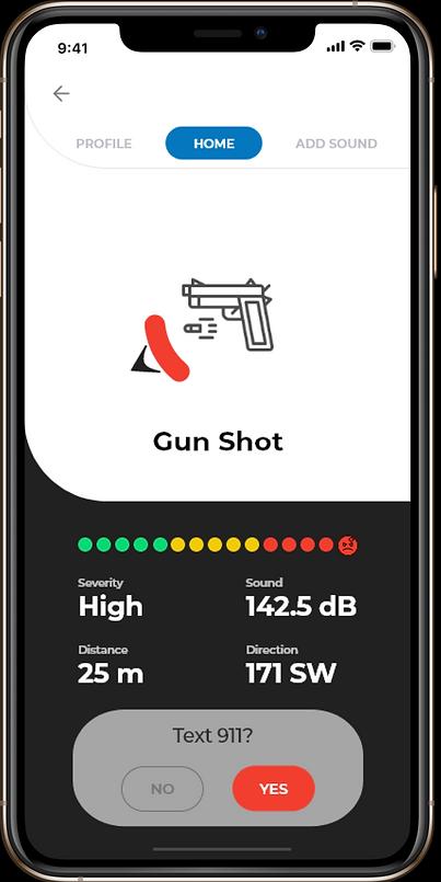 Gunshot Frame.png