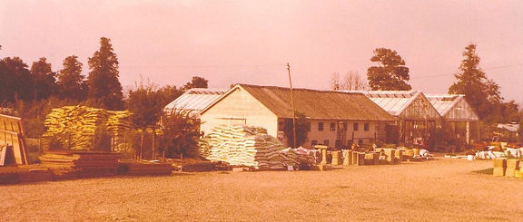 Waresley garden centre in the 1970's