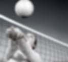 Website_VolleyballFellowship (2).png