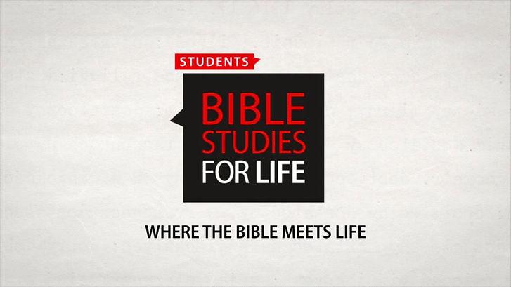 Student Bible Studies For Life pic.jpg