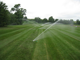 irrigation and sod.JPG