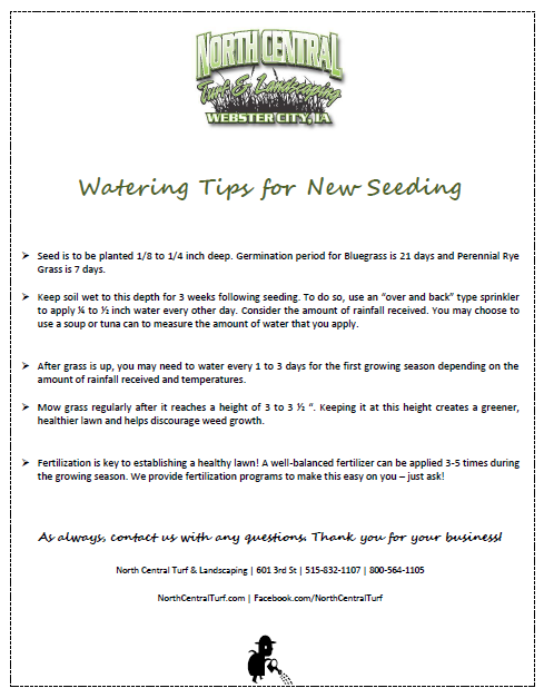 Watering Tips for New Seeding