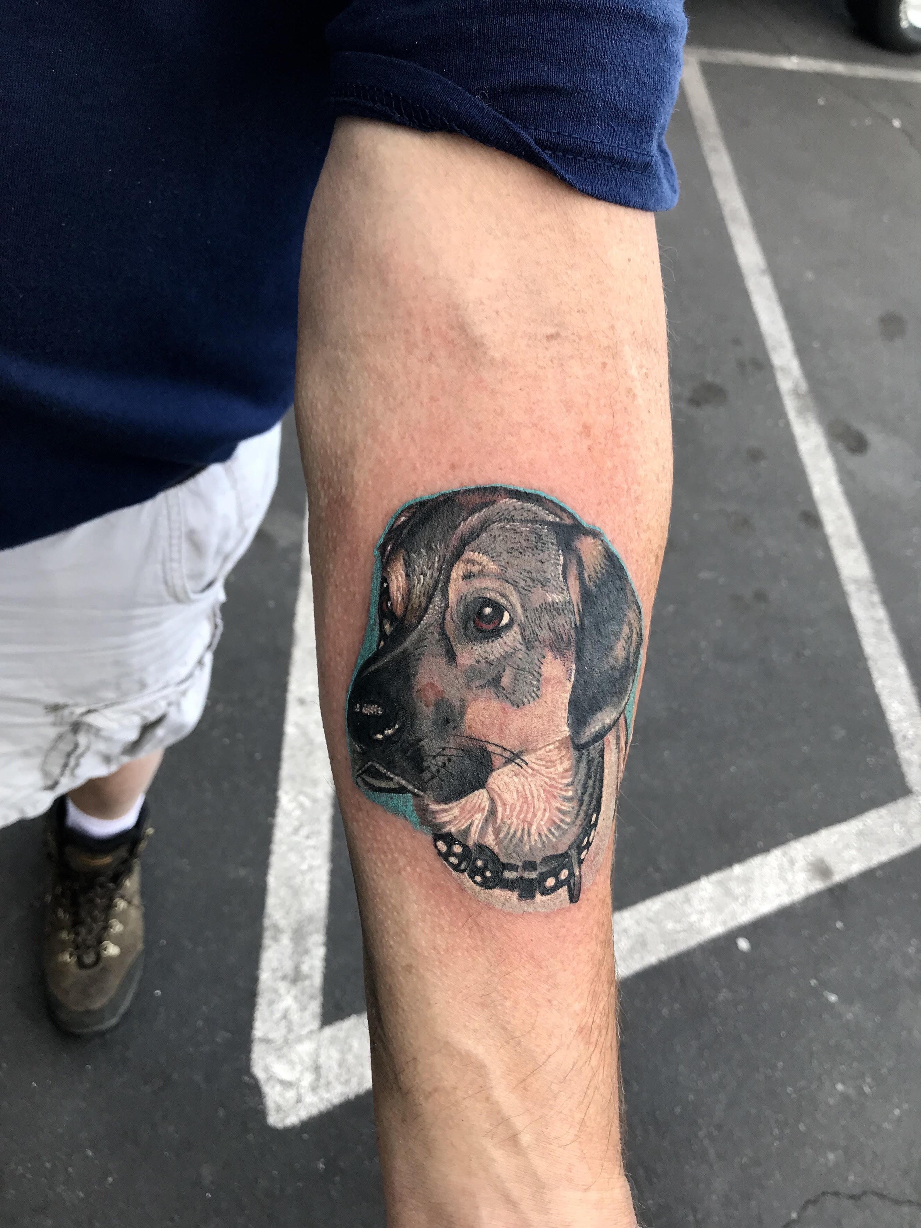 Dog Portrait tattoo by Krystof