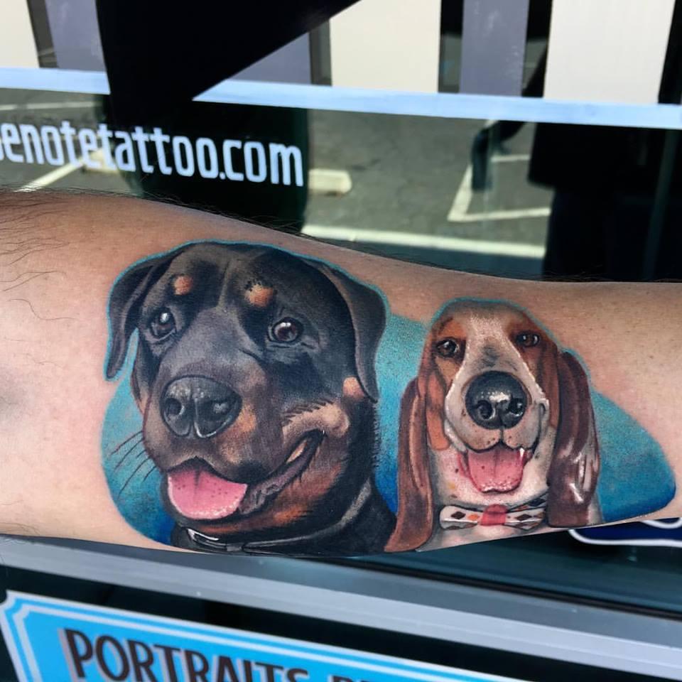 Dog Portraits by Krystof