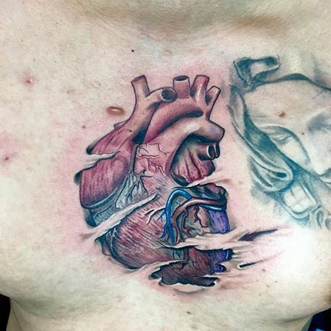 Anatomical Heart Tattoo by Krystof
