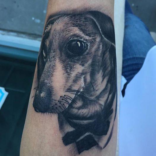 Dog_Portrait_by_Krystof
