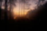 Schermafbeelding 2019-11-15 om 16.00.42.