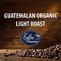 guatemalan-light.png