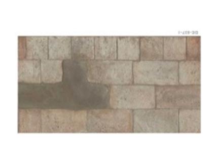 Brick DM.  12x24