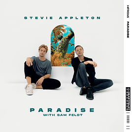 016 Stevie Appleton - Paradise Template.