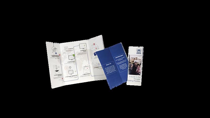 Displacement Process Book5.png