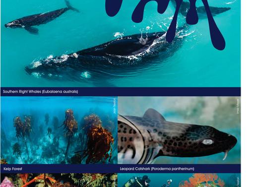 The Marine Biodiversity of Walker Bay