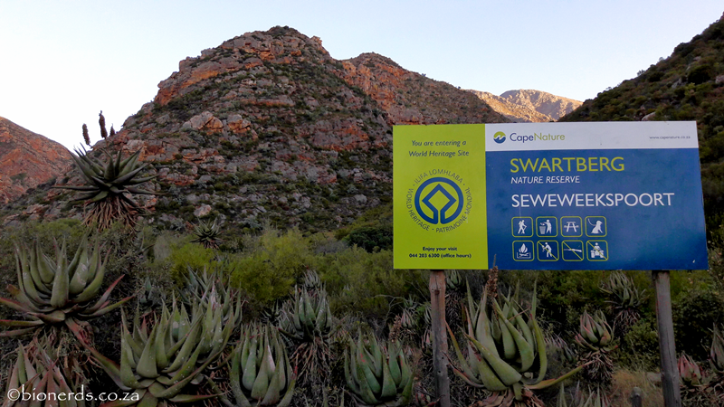 Swartberg Nature Reserve is managed by CapeNature