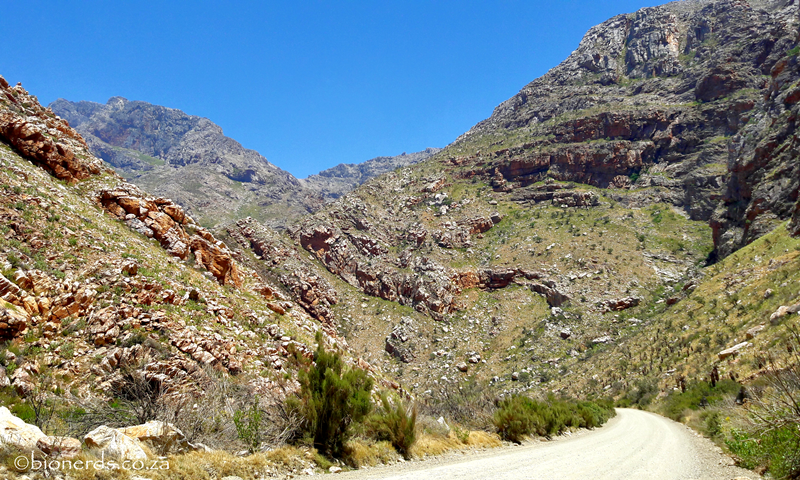 Seweweekspoort Sandstone Formations